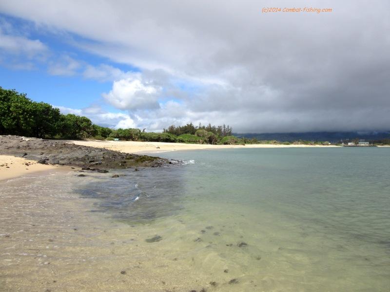 5e66f39165 Maalaea Bay along N. Kihei road, near the Kealia Pond boardwalk was our  favorite swimming and fishing beach, due to light waves, and nice pink/tan  sand, ...
