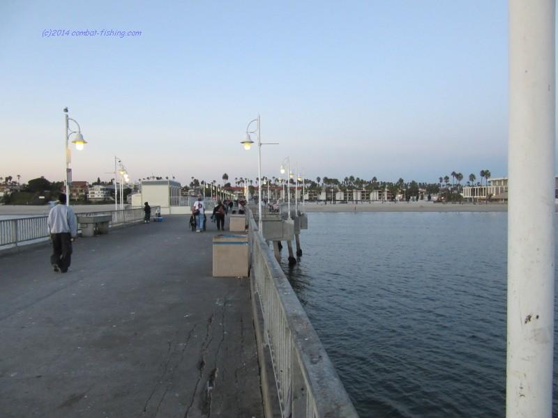 Best Vets In Long Beach Ca